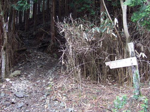 2008_0413miyanasansou0270s.JPG