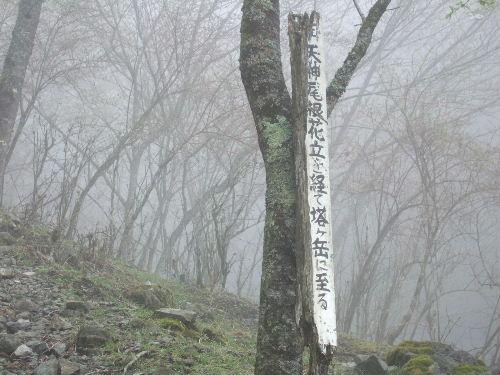 2008_0413miyanasansou0280s.JPG